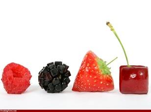 Geometric-Berries-51893_large