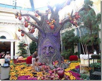Ferias 2011 - Vegas - San diego - 1 073
