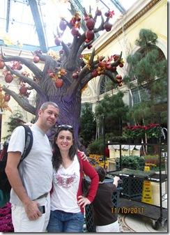 Ferias 2011 - Vegas - San diego - 1 074